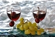 פירות ויין