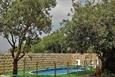 הגינה והבריכה