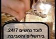 לוכד נחשים במעלה אדומים וירושלים 24/7 עופר: 054-234-2363