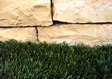 דשא סננטי