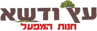 מפעל עצים בירושלים