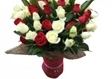 ורדים אדום לבן