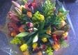 פרחי אורנית